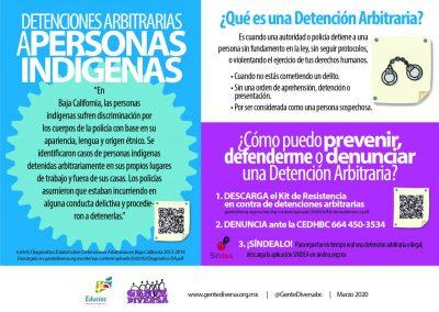 Infografia DA-Indigenas (1)